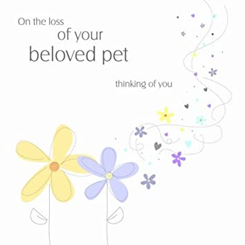card for loss of pet