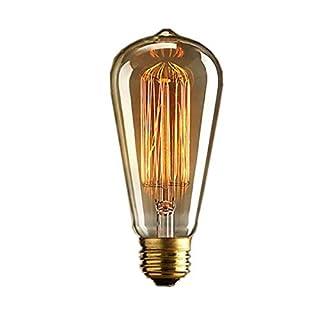 DSYJ for Antique Vintage Incandescent Edison Light Bulb, 60W 110V 2100K E26/E27 ST64 Base Squirrel Cage Filament Lamp Bulb for Home Office Fixtures, Pendant Decorative Ceiling Chandelier, Amber Warm
