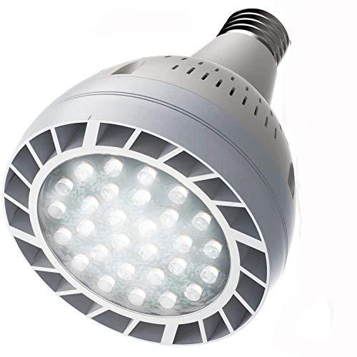 Halogen Vs Incandescent Outdoor Lighting in US - 6