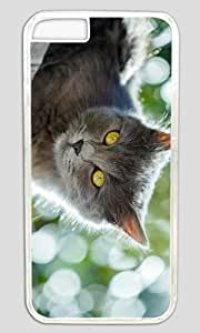 Angry Cat DIY Hard Shell Transparent Designed For iPhone 5c Case