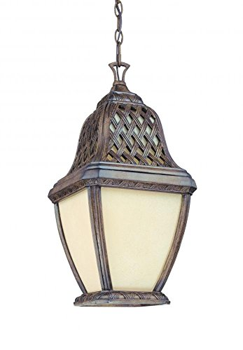 Troy FF2088BI One Light Hanging Lantern 21.5