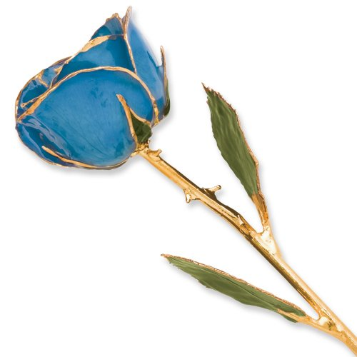 Blue Long Stem Dipped 24K Gold Trim Genuine Rose in Gold Gift Box by Allmygold Jewelers