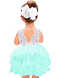 Girl Baby Girl Beaded Backless Peony Lace Back A-Line Tutu Tulle Lace Dress Flower