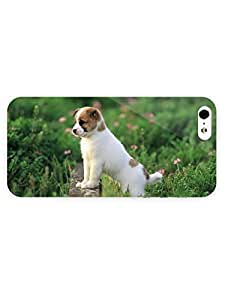 3d Full Wrap Case for iPhone 5/5s Animal Australian Cattle Dog Puppy