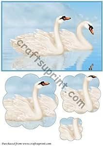 Cisnes en el lago festoneada Pyramage por Stefan Apetroae