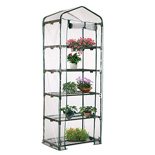 Luyao 5-Tier Small Greenhouse Portable Plant Green House Outdoor Gardening Hot House with Plastic Cover Roll-Up Door…