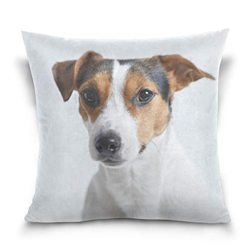 Holisaky Jack Russell Dog Decorative Square Throw Pillow Covers Cases Home Décor for Bed Sofa Couch Car 18 x 18 inch