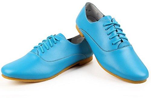 Flat Up Bumud Oxford Shoe Multi Blue Ballet Color Lace Women's wCwq1EXB