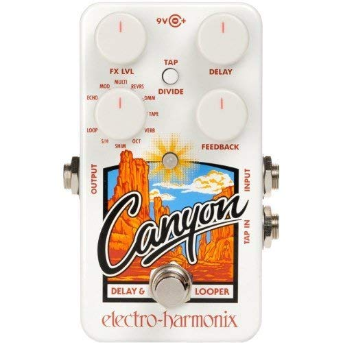 Electro Harmonix Canyon Delay and Looper,White, (Best Sounding Delay Pedal)