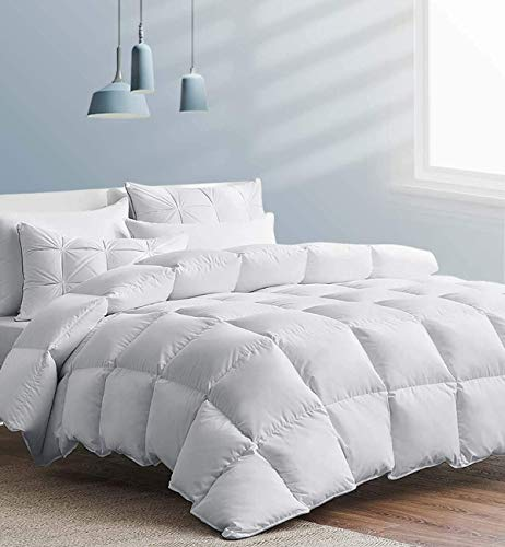Down Comforter Queen - Luxury Goose Filled Down Feather Comforter Duvet Insert - 1200TC Lightweight 100% Cotton Shell Soft 750 High Fill Power for All Season Bedding, 88x88 White