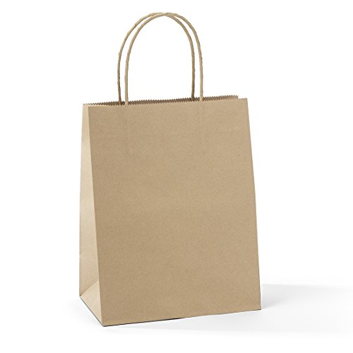 Halulu 50 Pcs 8x4.75x10.5' Kraft Brown Paper Handle Shopping Gift Merchandise Carry Retail Bags