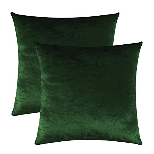GIGIZAZA Gold Velvet Decorative Throw Pillow Covers for Sofa Bed 2 Pack Soft Cushion Cover (Forest Green, 20 x 20- Set of 2)