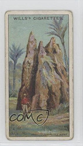 termites-nest-queensland-comc-reviewed-good-to-vg-ex-trading-card-1915-wills-overseas-dominions-aust