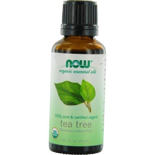 Price comparison product image Tea Tree Essential Oil (Certified Organic) 1 Ounce