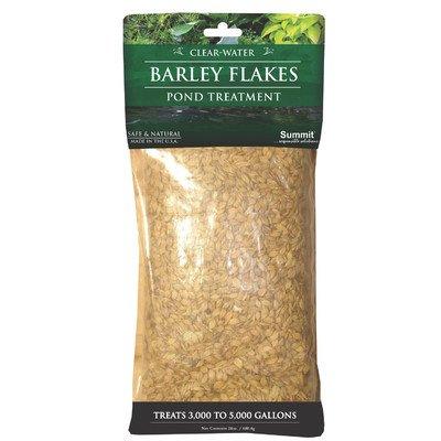 Barley Flakes Pond