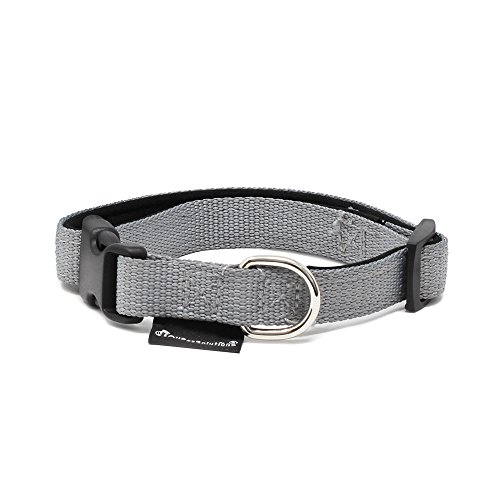 All Pet Solutions Dog Puppy Soft Padded Durable Strong Adjustable Collar, Small, Grey