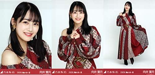 乃木坂46 2020年3月度月間ランダム生写真 スペシャル衣装24 3種コンプ 向井葉月