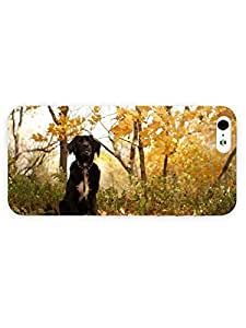3d Full Wrap Case for iPhone 6 4.7 Animal Black Dog In The Forest