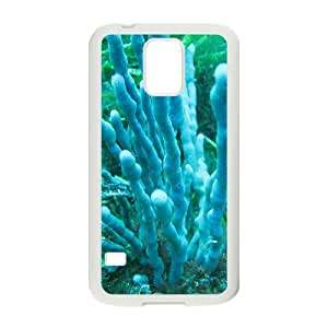 Whale Shark Hight Quality Plastic Case for Samsung Galaxy S5