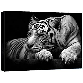 BLACK AND WHITE BENGAL TIGER ANIMAL CANVAS FRAMED 30x20