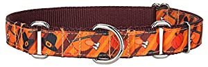 Country Brook Design Thanksgiving Feast Ribbon Martingale Collar