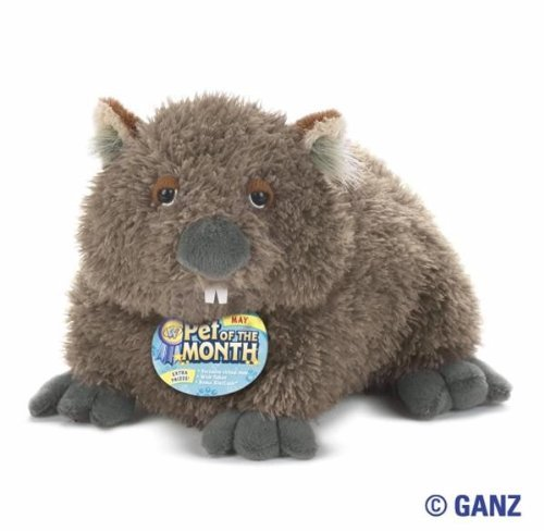Webkinz Wombat May Pet of the Month with Trading - Webkinz Bat