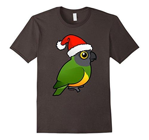 Senegal Parrot - 9