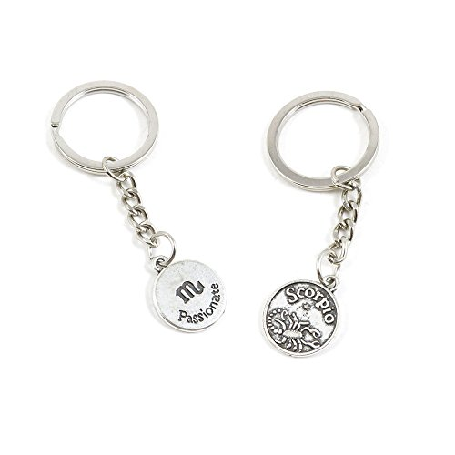 1 Pieces Keychain Keyring Door Car Key Chain Ring Tag Charms Supply G5AR1U Scorpio