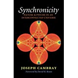 Synchronicity: Nature and Psyche in an Interconnected Universe (Carolyn and Ernest Fay Series in Analytical Psychology)