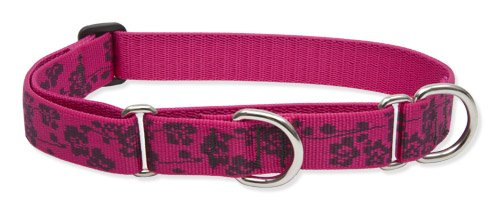 "LupinePet Originals 1"" Plum Blossom 15-22"" Martingale Collar for Medium and Larger Dogs"