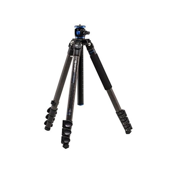 RetinaPix Benro GC258F GoClassic Tripod with Carbon Fiber Flip Lock Legs
