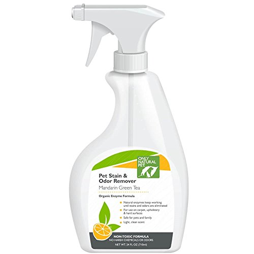 Only Natural Pet Stain & Odor Remover - Mandarin Orange & Green Tea Scent Eliminates Odors, Organic Enzyme Formula for Carpets, Floors & Upholstery - 24 Fl Oz Spray