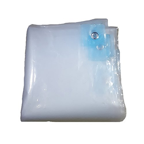 避ける計画的添加CHAOXIANG オーニング 厚い トランスペアレント 折りたたみ可能 両面 防水 日焼け止め 耐寒性 防塵の 防湿性 耐食性 軽量 PE、 100g/M 2、 23サイズ (色 : トランスペアレント, サイズ さいず : 8×8m)