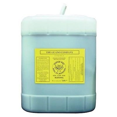 Guano Company 720036 Budswel Liquid, 5 gallon