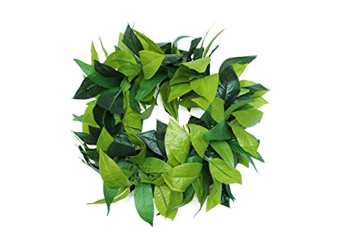 Hawaii Hangover  Luau Party Maile King Artificial Fabric All Green Leaves Haku Head Band,Green Haku,1 -
