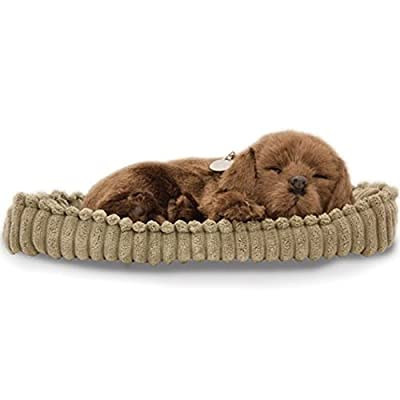 Perfect Petzzz Huggable Breathing Puppy Dog Pet Bed Chocolate Lab: Toys & Games