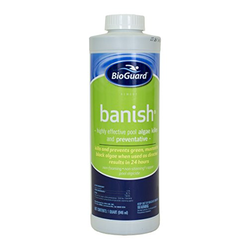 (BioGuard Banish Algicide - 1 Quart)