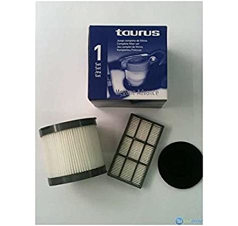 Taurus - Set Filtro 999149, Para Aspirador Megane 2200-2000 Advance: Amazon.es: Hogar