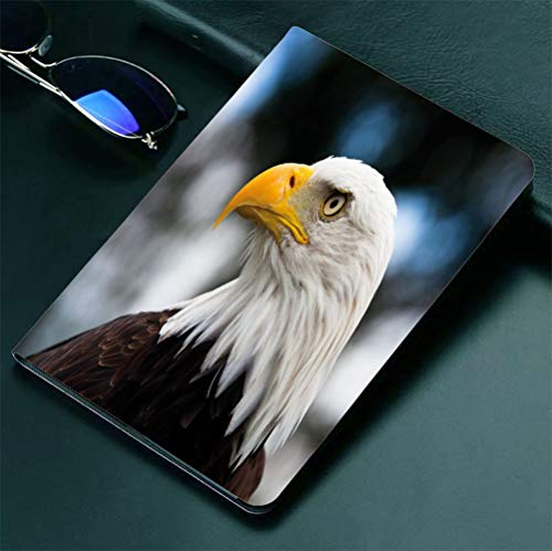 America Ltd Automatic Pencil - iPad 9.7