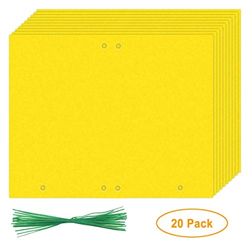 Naomo Dual-Sided Sticky Traps for Flying Plant Insect (Fungus Gnats, Aphids, Whiteflies, Leafminers, Thrips, Leaf Miners) 9.8x7.8 Inches, with Twist Ties (20 Pack, Rectangular Shape)