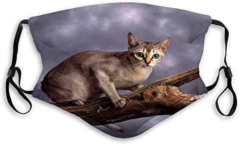 Singapura Katze Stehender Ast Agai Verstellbare Und Austauschbare Außenabdeckung Baumarkt
