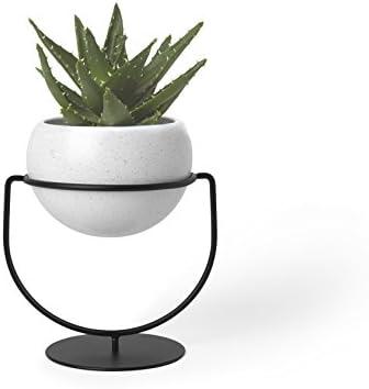[Amazon.ca] Umbra Nesta desktop/hanging plant holder $14.38 (warm)