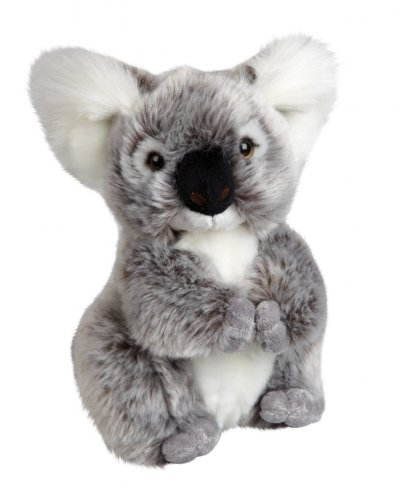 Plush Soft Toy Koala Bear from The Suma Collection by Ravensden. 20cm. FRS039A