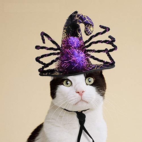 Stock Show Pet Halloween Hat Purple&Black Witch Hat with Spider Decor Funny Party Halloween Costume Headwear Cosplay Clothing Accessories for Cats/Kitten/Small Dogs]()