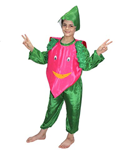 Onion Fancy Dress for Kids,Vegetables Costume for School Annual Function -