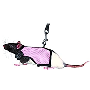 Amazon.com : Trixie Pet Products 61511 1.20 m Rat Soft Harness with