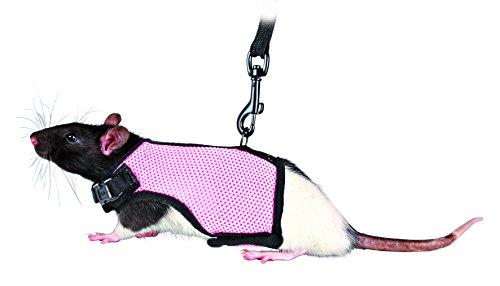 Wear Rat - 7