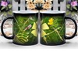 Amymami Personalized Gifts Heat Changing Magic Coffee Mug - Spanish Fly Beetle Insect Lytta Vesicatoria