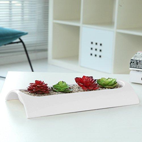 11 X 5 Inch Curved Modern Rectangular Ceramic Flower Dish, Sleek Center Piece Succulent Planter, White by MyGift (Image #3)
