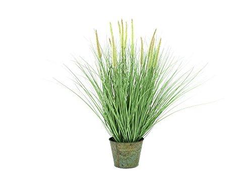 EUROPALMS Ziergras, blühend, 70cm, Kunstpflanze